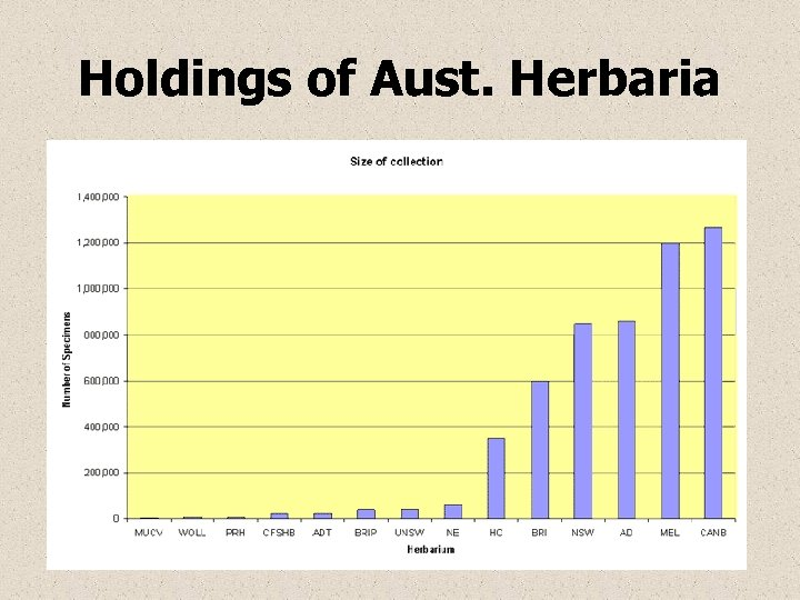 Holdings of Aust. Herbaria