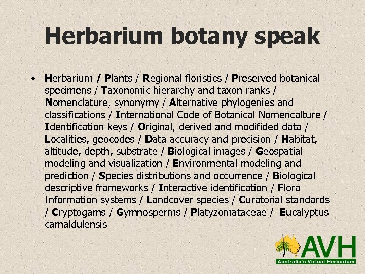 Herbarium botany speak • Herbarium / Plants / Regional floristics / Preserved botanical specimens