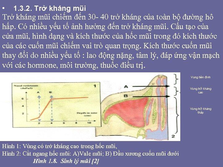 • 1. 3. 2. Trở kháng mũi chiếm đến 30 - 40 trở