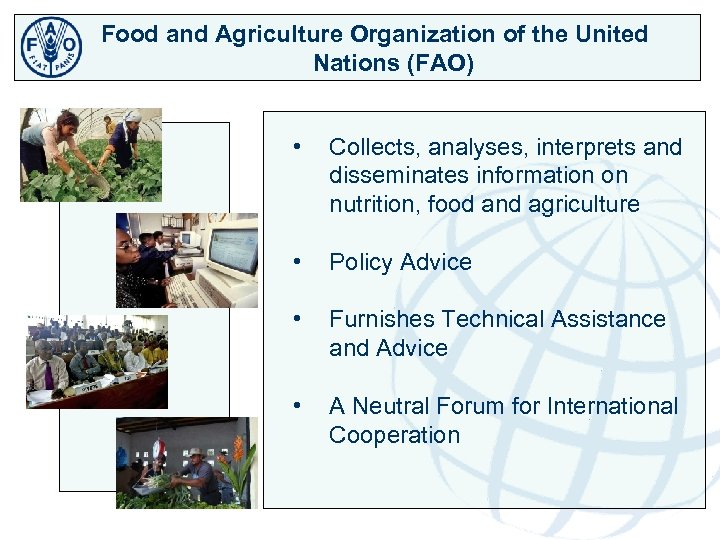 Food and Agriculture Organization of the United Nations (FAO) • Collects, analyses, interprets and