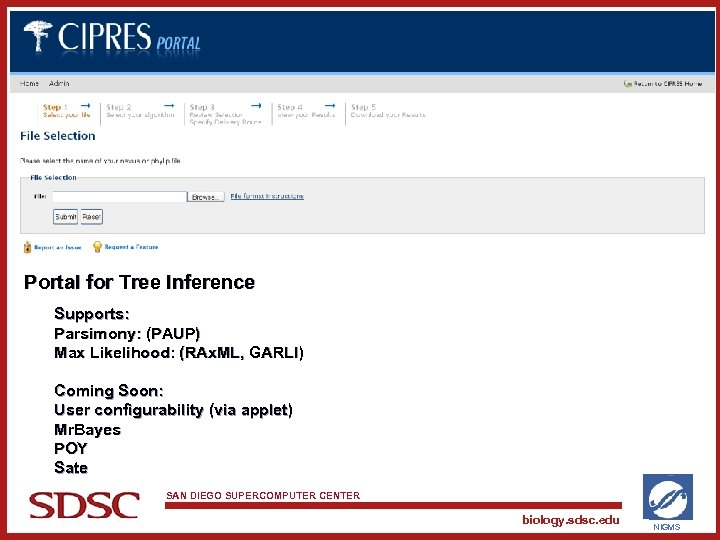 Portal for Tree Inference Supports: Parsimony: (PAUP) Max Likelihood: (RAx. ML, GARLI) Coming Soon: