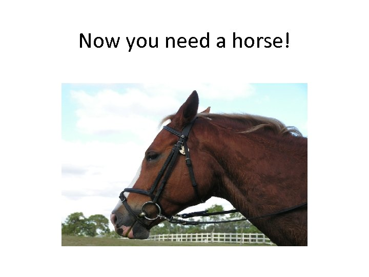 Now you need a horse!