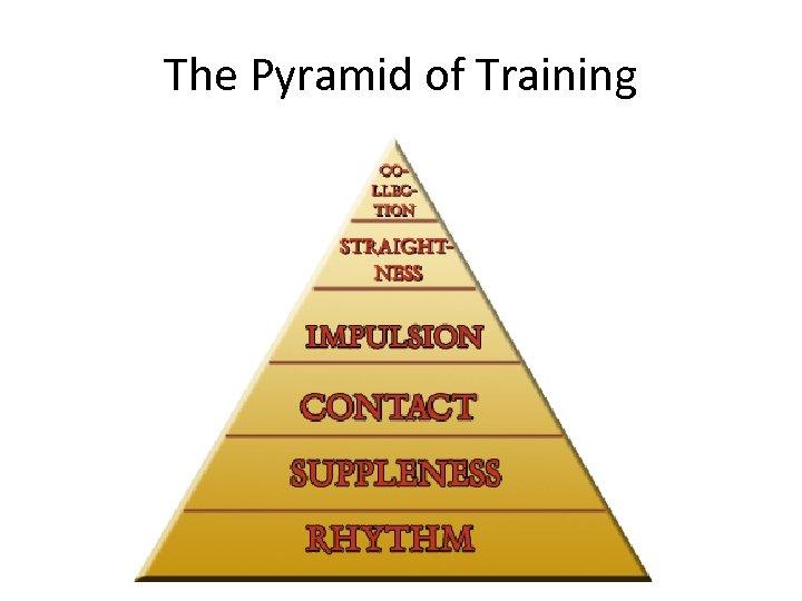 The Pyramid of Training