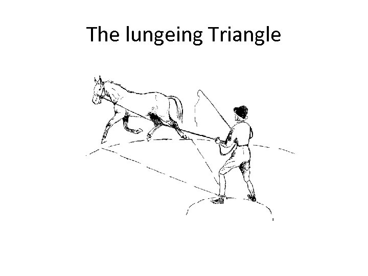 The lungeing Triangle