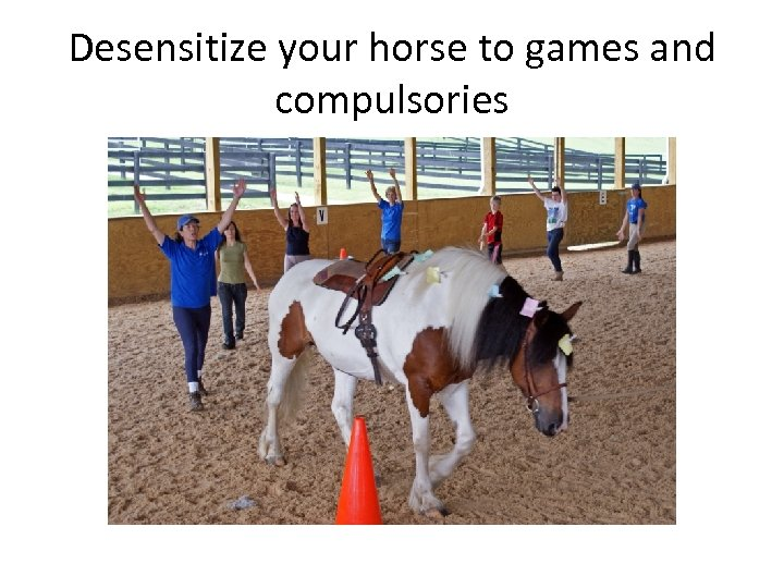 Desensitize your horse to games and compulsories
