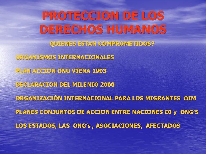 PROTECCION DE LOS DERECHOS HUMANOS QUIENES ESTAN COMPROMETIDOS? ORGANISMOS INTERNACIONALES PLAN ACCION ONU VIENA