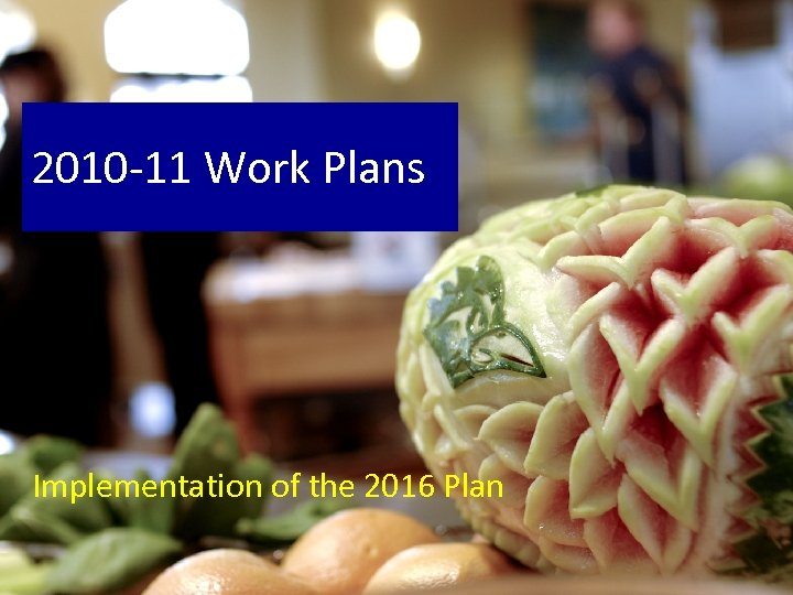 2010 -11 Work Plans Implementation of the 2016 Plan