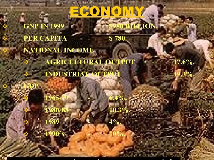 ECONOMY v GNP IN 1999 - $980 BILLION. v PER CAPITA - $ 780.