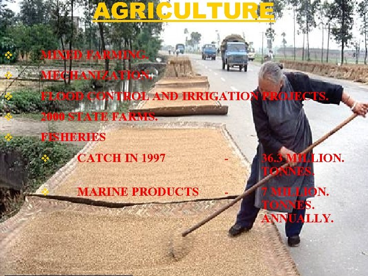AGRICULTURE v MIXED FARMING. v MECHANIZATION. v FLOOD CONTROL AND IRRIGATION PROJECTS. v 2000