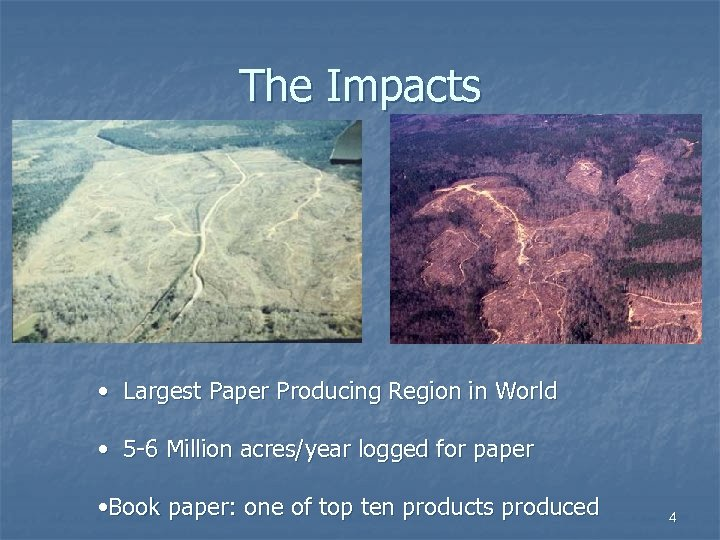 The Impacts • Largest Paper Producing Region in World • 5 -6 Million acres/year