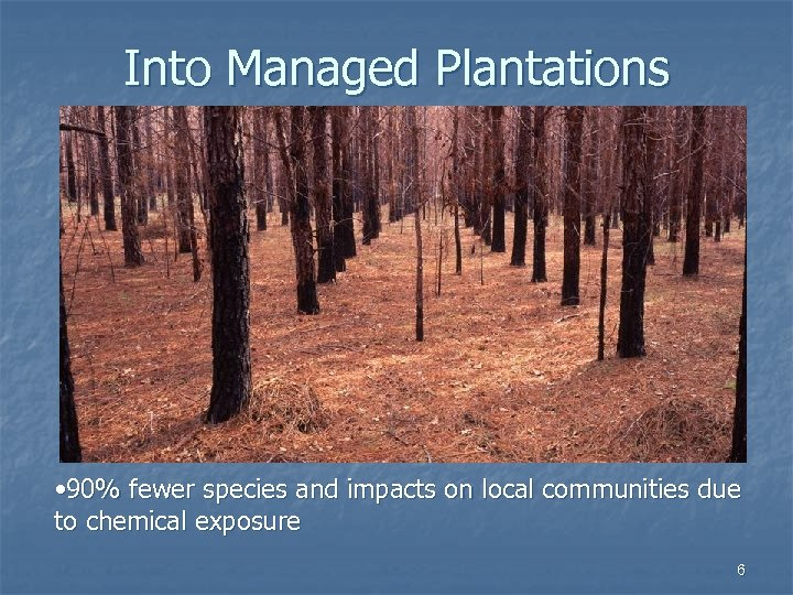 Into Managed Plantations • 90% fewer species and impacts on local communities due to