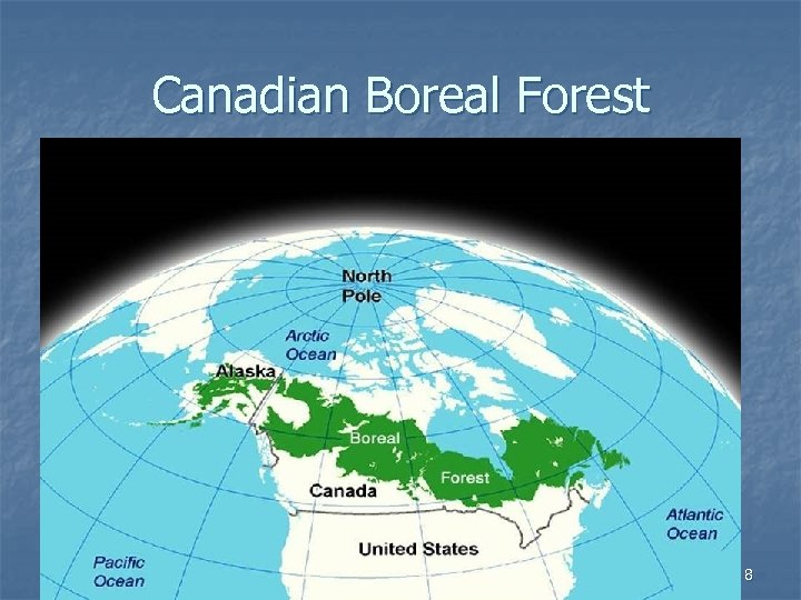 """Canadian Boreal Forest n n """"North America's Amazon, """" as the world's largest contiguous"""