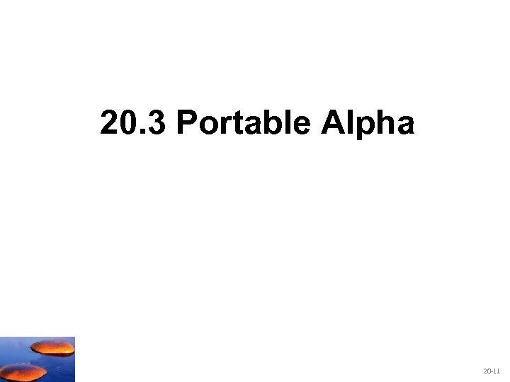 20. 3 Portable Alpha 20 -11