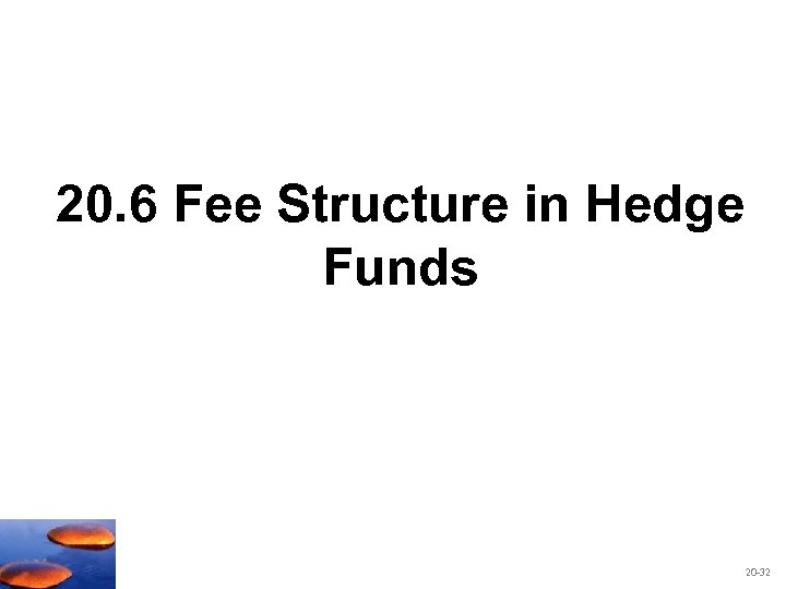 20. 6 Fee Structure in Hedge Funds 20 -32