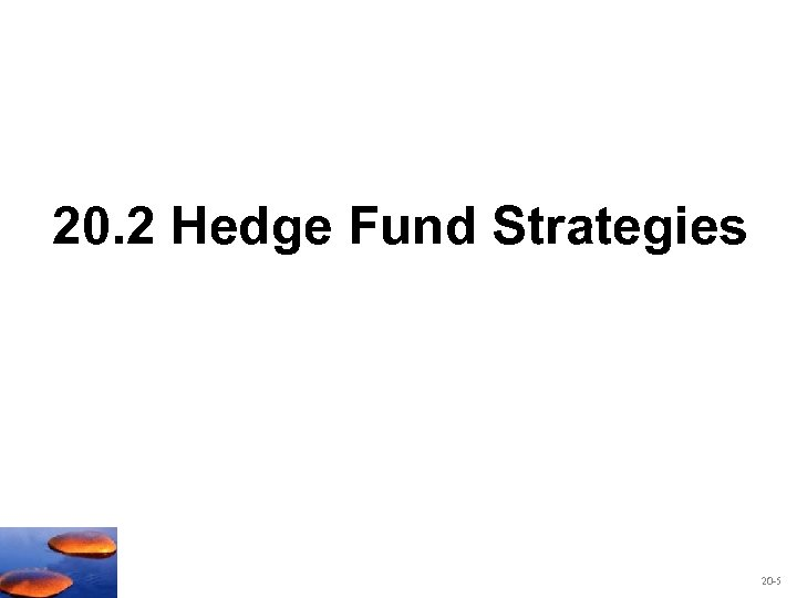 20. 2 Hedge Fund Strategies 20 -5