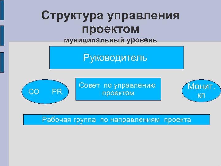 Структура управления проектом муниципальный уровень Руководитель СО PR Совет по управлению проектом Монит. кп