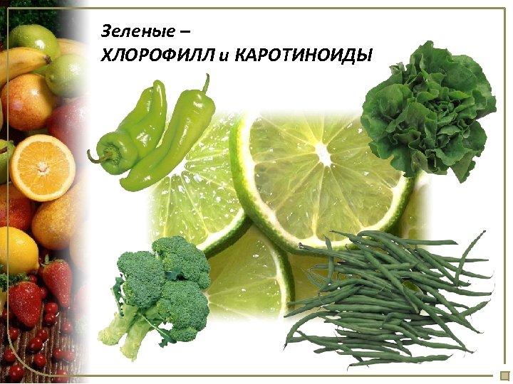 Зеленые – ХЛОРОФИЛЛ и КАРОТИНОИДЫ