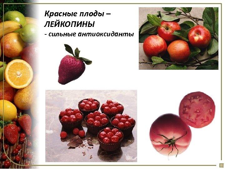 Красные плоды – ЛЕЙКОПИНЫ - сильные антиоксиданты