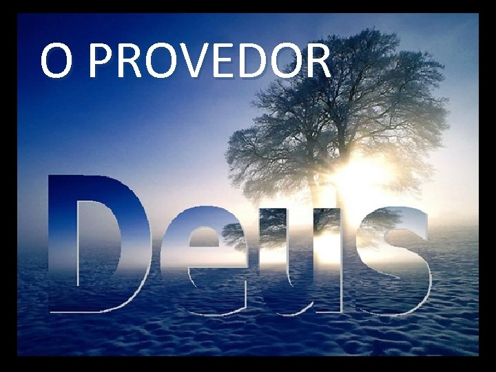 O PROVEDOR
