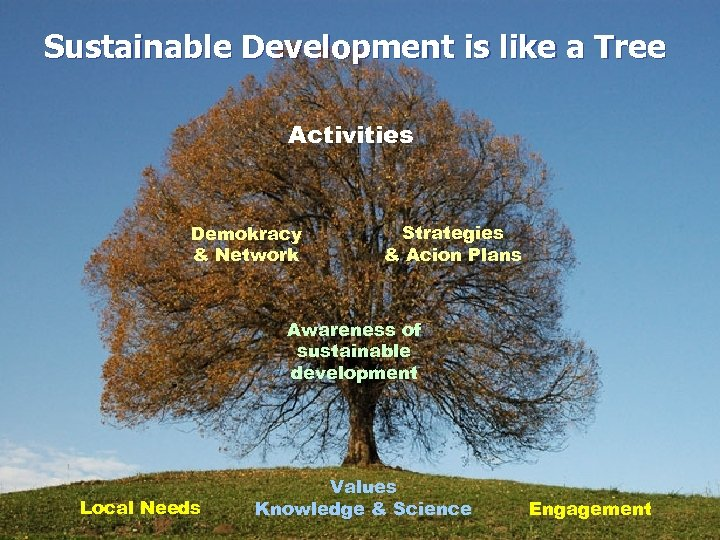 Sustainable Development is like a Tree Activities Demokracy & Network Strategies & Acion Plans