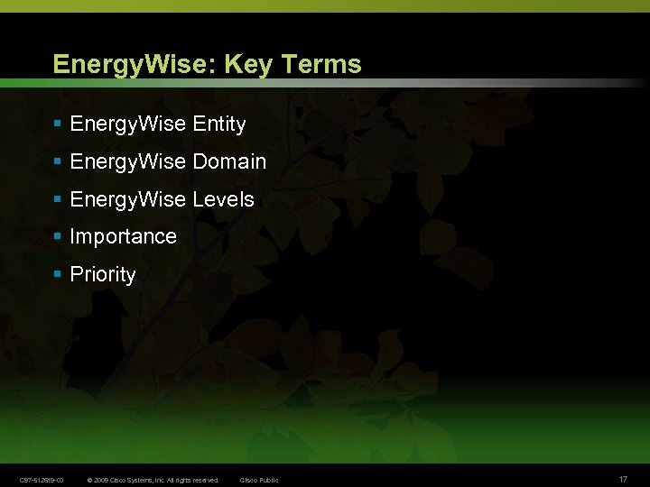 Energy. Wise: Key Terms § Energy. Wise Entity § Energy. Wise Domain § Energy.
