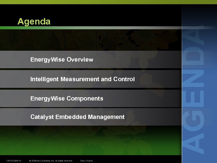 Agenda Energy. Wise Overview Intelligent Measurement and Control Energy. Wise Components Catalyst Embedded Management