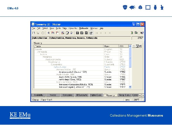 EMu 4. 0 Collections Management Museums