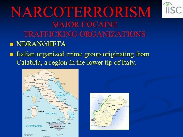NARCOTERRORISM MAJOR COCAINE TRAFFICKING ORGANIZATIONS n n NDRANGHETA Italian organized crime group originating from