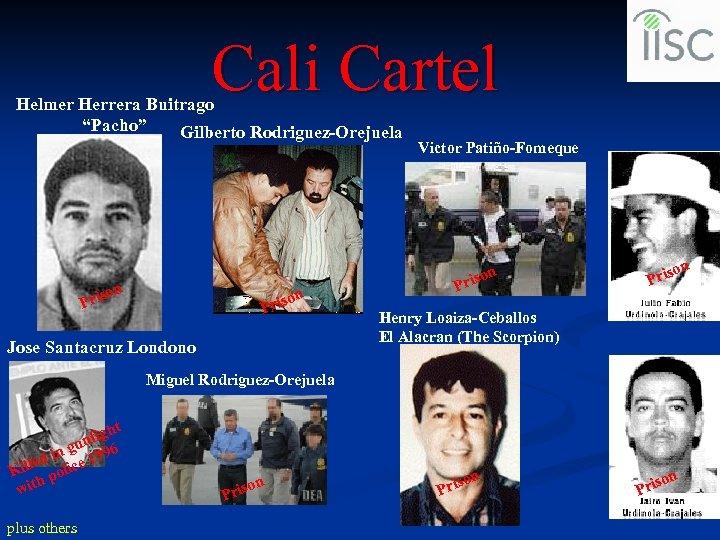 "Cali Cartel Helmer Herrera Buitrago ""Pacho"" Gilberto Rodriguez-Orejuela Victor Patiño-Fomeque n n riso P"