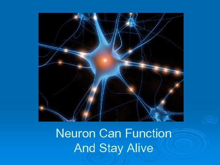 Neuron Can Function And Stay Alive