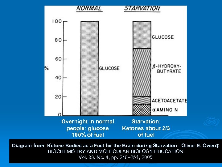 Overnight in normal people: glucose 100% of fuel Starvation: Ketones about 2/3 of fuel