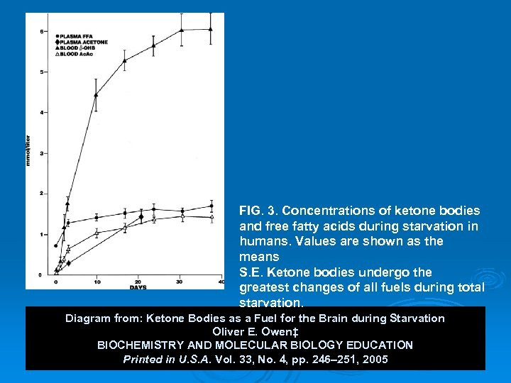 FIG. 3. Concentrations of ketone bodies and free fatty acids during starvation in humans.