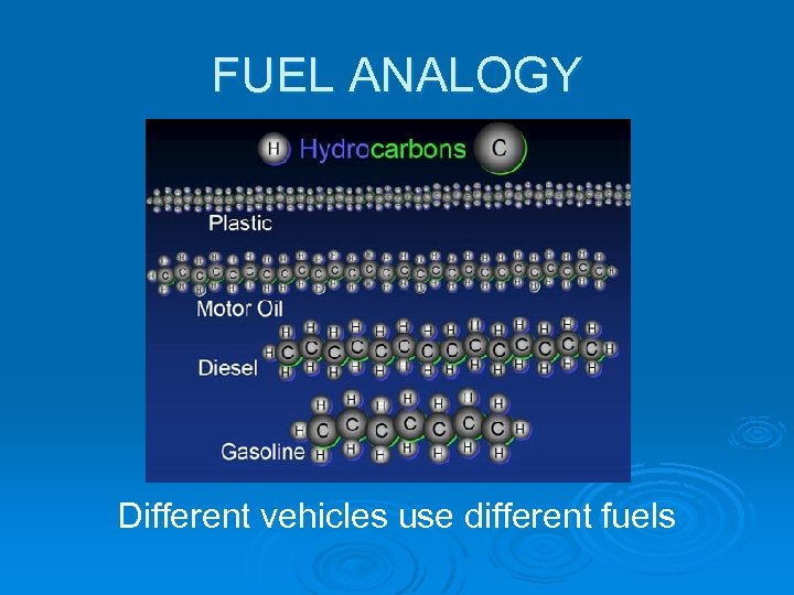 FUEL ANALOGY Different vehicles use different fuels