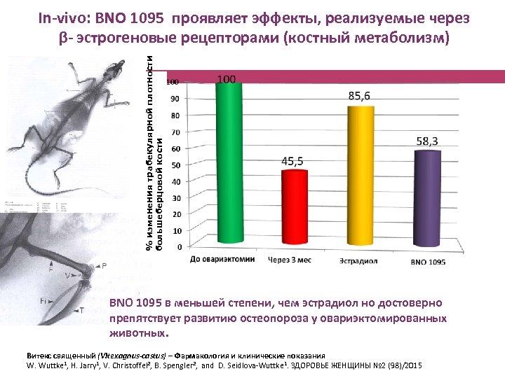 % изменения трабекулярной плотности большеберцовой кости In-vivo: BNO 1095 проявляет эффекты, реализуемые через β-
