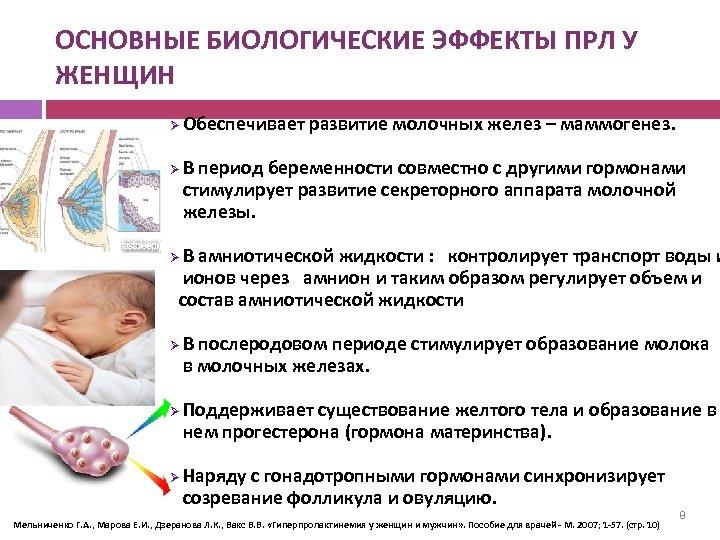 ОСНОВНЫЕ БИОЛОГИЧЕСКИЕ ЭФФЕКТЫ ПРЛ У ЖЕНЩИН Ø Ø Обеспечивает развитие молочных желез – маммогенез.