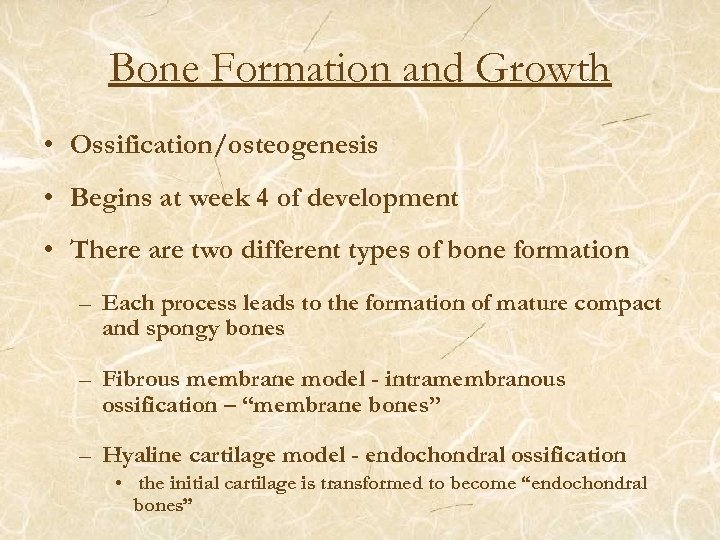 Bone Formation and Growth • Ossification/osteogenesis • Begins at week 4 of development •