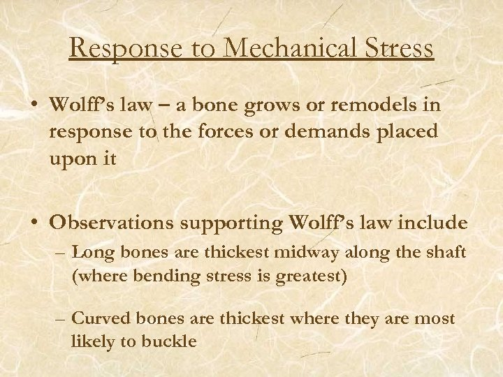 Response to Mechanical Stress • Wolff's law – a bone grows or remodels in