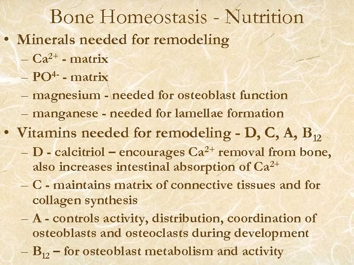 Bone Homeostasis - Nutrition • Minerals needed for remodeling – Ca 2+ - matrix