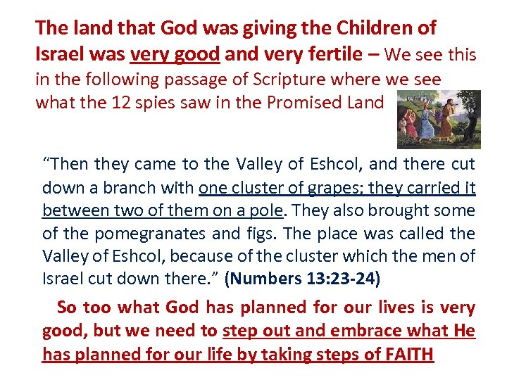 The land that God was giving the Children of Israel was very good and