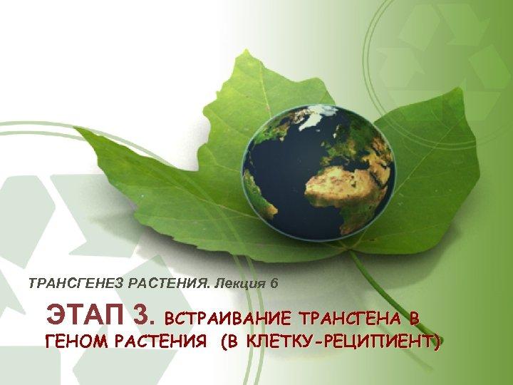 ТРАНСГЕНЕЗ РАСТЕНИЯ. Лекция 6 ЭТАП 3. ВСТРАИВАНИЕ ТРАНСГЕНА В ГЕНОМ РАСТЕНИЯ (В КЛЕТКУ-РЕЦИПИЕНТ)
