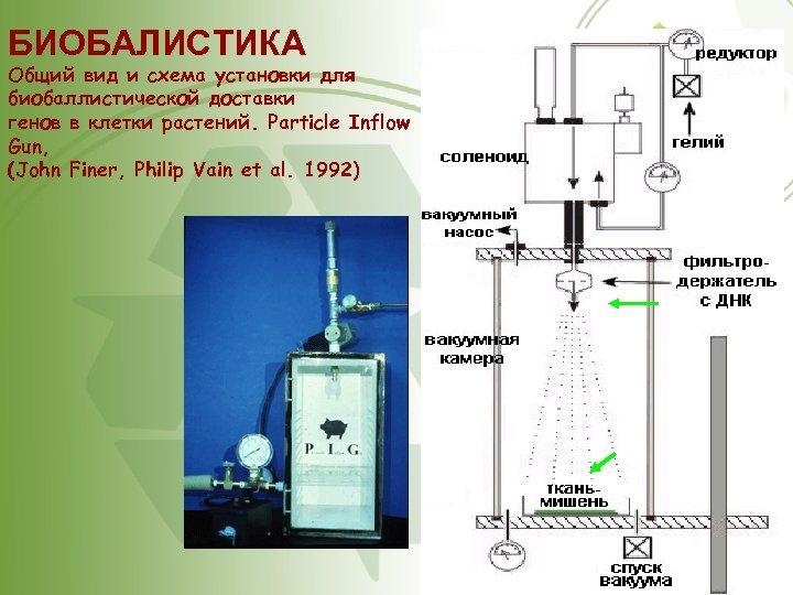 БИОБАЛИСТИКА Общий вид и схема установки для биобаллистической доставки генов в клетки растений. Particle