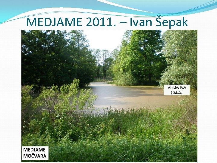 MEDJAME 2011. – Ivan Šepak