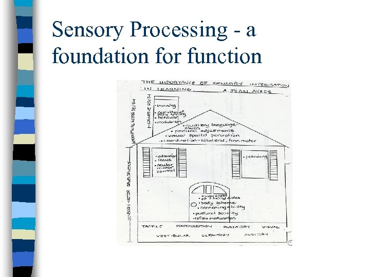 Sensory Processing - a foundation for function