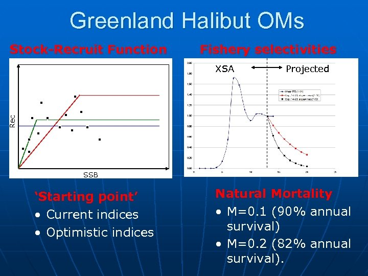 Greenland Halibut OMs Stock-Recruit Function Fishery selectivities Projected Rec XSA SSB 'Starting point' •