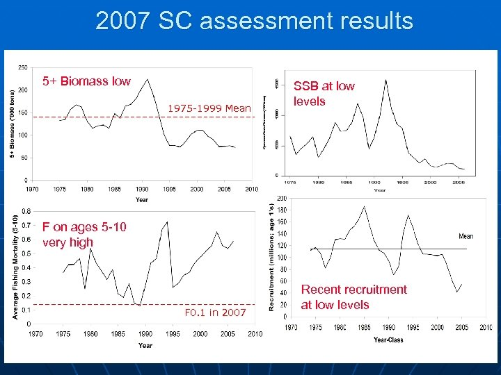 2007 SC assessment results 5+ Biomass low 1975 -1999 Mean SSB at low levels