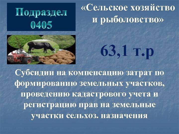 «Сельское хозяйство и рыболовство» 63, 1 т. р Субсидии на компенсацию затрат по