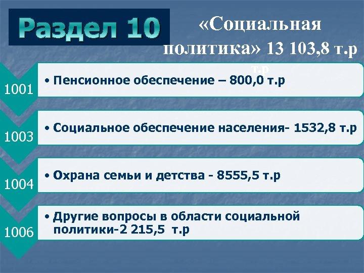 Раздел «Социальная 10 политика» 13 103, 8 т. р 1001 1003 1004 • Пенсионное