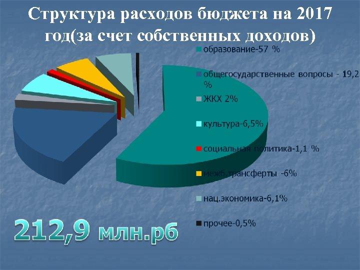 Структура расходов бюджета на 2017 год(за счет собственных доходов)