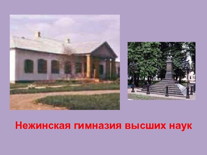 Нежинская гимназия высших наук
