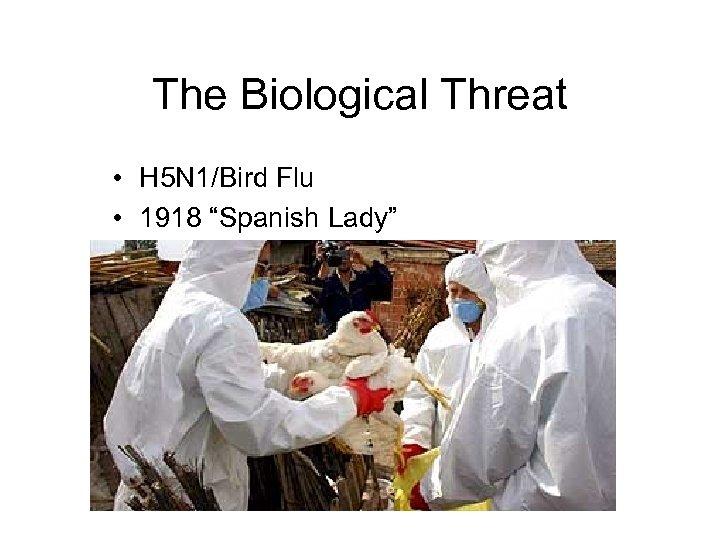 """The Biological Threat • H 5 N 1/Bird Flu • 1918 """"Spanish Lady"""""""